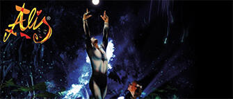 Le Cirque World's Top Performers in scena con Alis all'RDS Stadium di Rimini